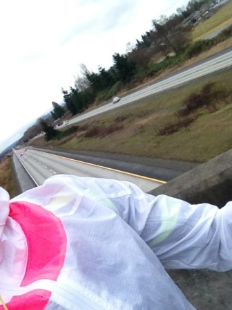 overpass run